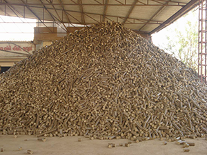 Rice Husk Biomass Briquetting Plant
